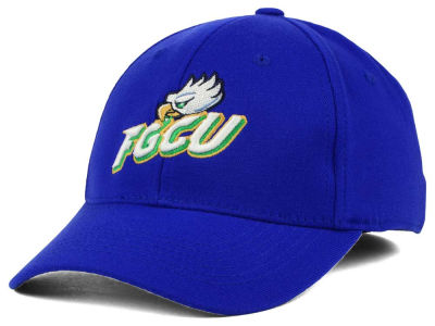 Florida Gulf Coast Eagles Top of the World NCAA Team Color PC Cap