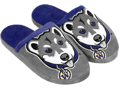 Washington Huskies Mascot Slide Youth Slippers