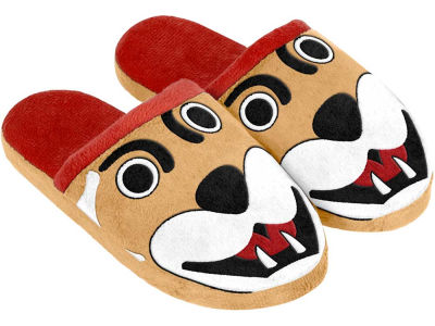Washington State Cougars Mascot Slide Youth Slippers
