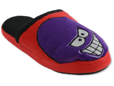 Detroit Red Wings Mascot Slide Youth Slippers