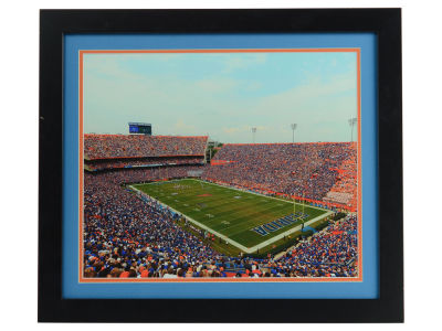 "Florida Gators Double Color Mat Photo 22""x25"""