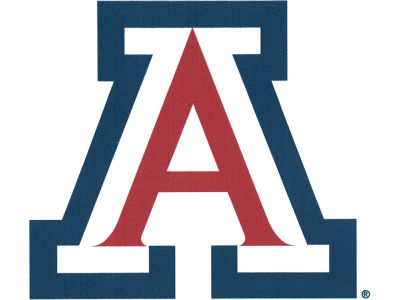 Arizona Wildcats 4x4 Magnet