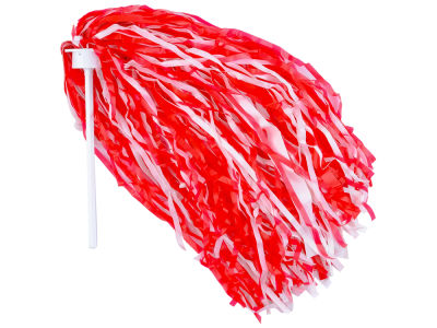 "Louisville Cardinals 6"" Rooter Pom"