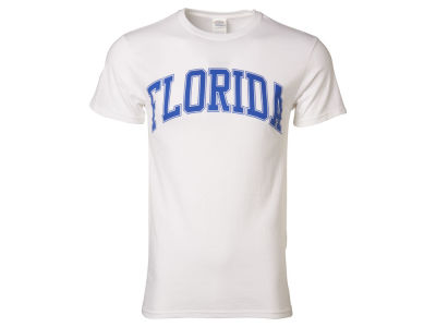 Florida Gators NCAA Men's Identity Arch T-Shirt