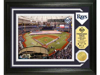 Tampa Bay Rays Photo Mint Coin-Bronze