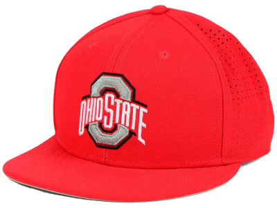 Ohio State Buckeyes Nike NCAA Authentic Vapor Fitted Cap