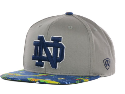 Notre Dame Fighting Irish Top of the World NCAA Shoreline Snapback Cap