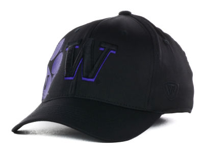 Washington Huskies Top of the World NCAA Goner One-Fit Cap
