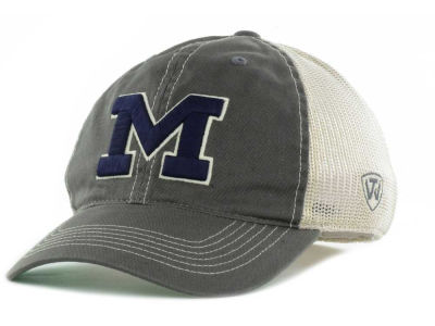Michigan Wolverines Top of the World Putty One-Fit