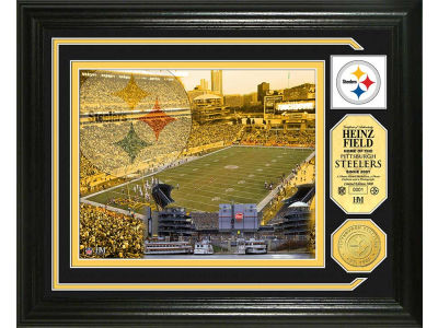 Pittsburgh Steelers Photo Mint Coin-Bronze