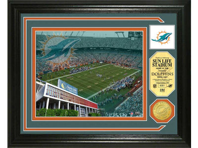Miami Dolphins Photo Mint Coin-Bronze