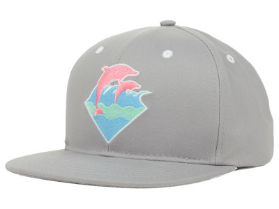 Pink Dolphin Spring Waves Snapback Cap