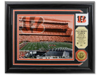 Cincinnati Bengals Photo Mint Coin-Bronze