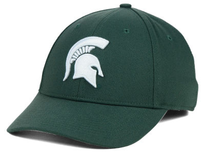 Michigan State Spartans Nike NCAA Dri-Fit Swooshflex Cap