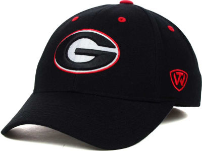 Georgia Bulldogs Top of the World NCAA Memory Fit Dynasty Fitted Hat