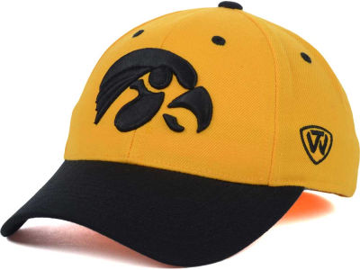 Iowa Hawkeyes Top of the World NCAA Memory Fit Dynasty Fitted Hat