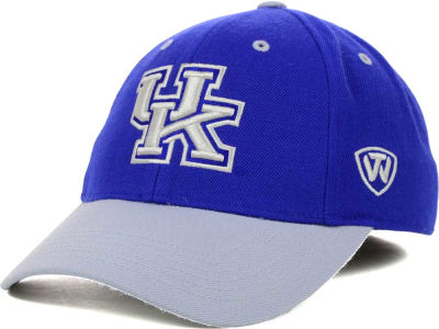 Kentucky Wildcats Top of the World NCAA Memory Fit Dynasty Fitted Hat