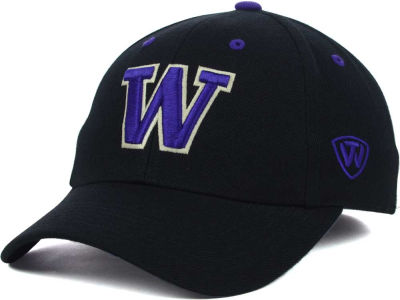 Washington Huskies Top of the World NCAA Memory Fit Dynasty Fitted Hat