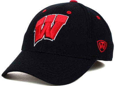 Wisconsin Badgers Top of the World NCAA Memory Fit Dynasty Fitted Hat