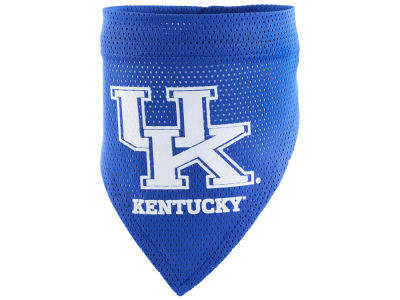 Kentucky Wildcats Pet Bandana