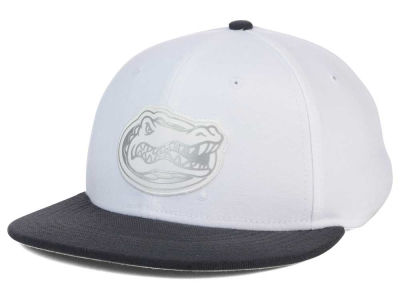 Florida Gators Nike NCAA True Platinum Swooshflex Hat