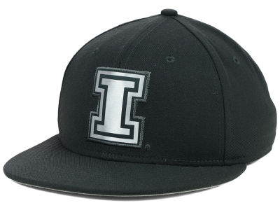 Illinois Fighting Illini Nike NCAA True Platinum Swooshflex Hat