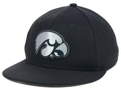 Iowa Hawkeyes Nike NCAA True Platinum Swooshflex Hat