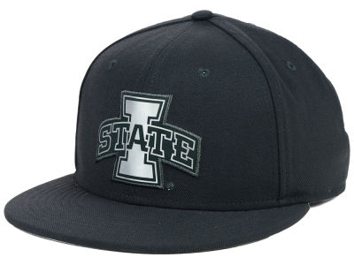 Iowa State Cyclones Nike NCAA True Platinum Swooshflex Hat