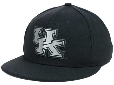 Kentucky Wildcats Nike NCAA True Platinum Swooshflex Hat