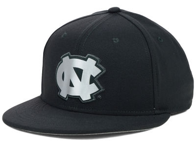 North Carolina Tar Heels Nike NCAA True Platinum Swooshflex Hat