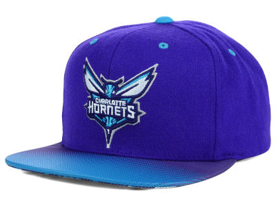 Charlotte Hornets Mitchell and Ness NBA Stop on a Dime Snapback Cap