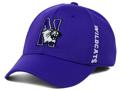 Northwestern Wildcats Top of the World NCAA Booster Cap