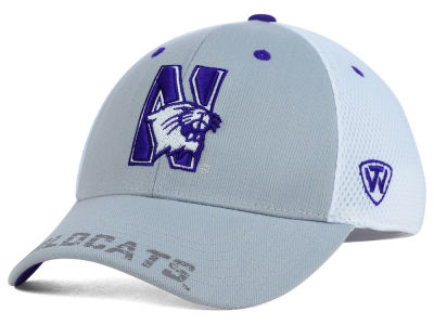 Northwestern Wildcats Top of the World NCAA Albatross Hat