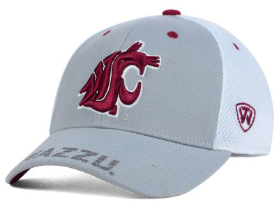 Washington State Cougars Top of the World NCAA Albatross Hat