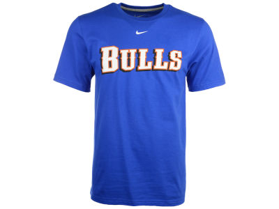 Durham Bulls MiLB All Purpose Wordmark T-Shirt
