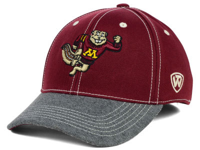 Minnesota Golden Gophers Top of the World NCAA D'Up Stretch Cap