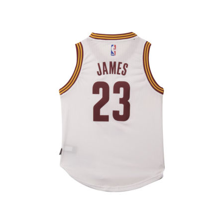 Cleveland Cavaliers LeBron James NBA Youth Swingman Jersey