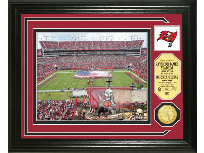 Tampa Bay Buccaneers Photo Mint Coin-Bronze