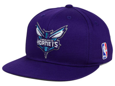 Charlotte Hornets Mitchell and Ness NBA Youth Solid Snapback Cap