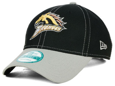 Western Michigan Broncos New Era NCAA Fundamental Tech 9FORTY Cap