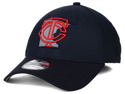 Minnesota Twins New Era MLB State Flective 39THIRTY Cap