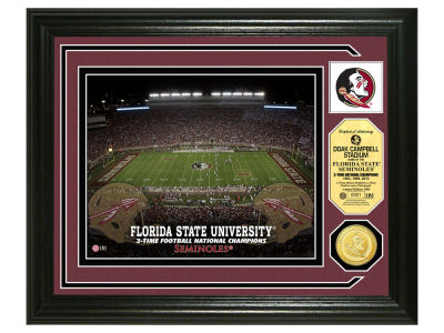Florida State Seminoles Photo Mint Coin-Bronze