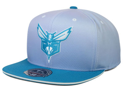 Charlotte Hornets Mitchell and Ness NBA Faded 2 Tone High Crown Fitted Cap