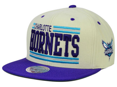 Charlotte Hornets Mitchell and Ness NBA Bar'd Up Snapback Cap