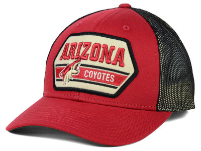 Arizona Coyotes Reebok NHL Patched Trucker Cap
