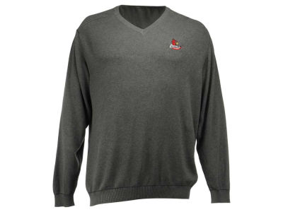 Louisville Cardinals NCAA Men's Broadview V-Neck Sweater