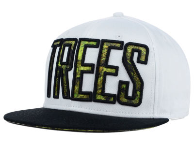 BLVD Trees 3 Snapback Hat