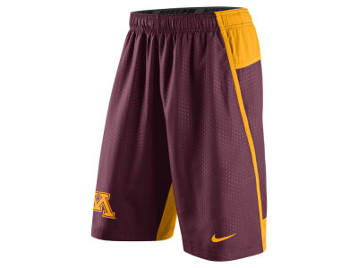 Minnesota Golden Gophers Nike NCAA Men's Fly XL 3.0 Shorts