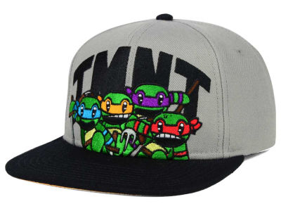 Teenage Mutant Ninja Turtles Battle Snapback Hat
