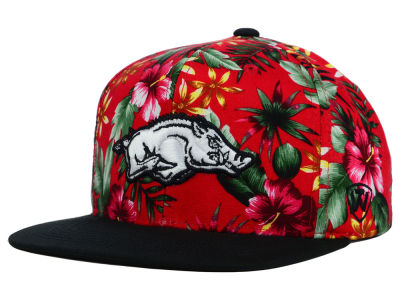 Arkansas Razorbacks Top of the World NCAA Waverunner Snapback Hat